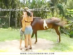 pregnant girl with horse 2